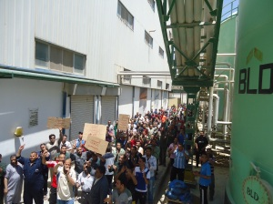 IFFCO Egypt strike 1
