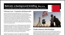 bahrain_briefing_2014_crop